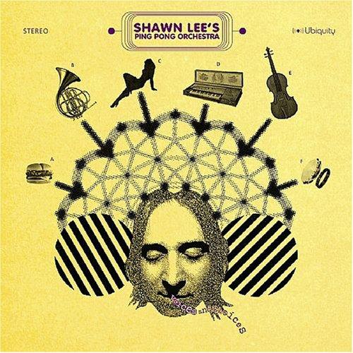 Voices and Choices [Vinyl LP]
