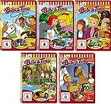 Bibi & Tina - DVD 11-15 zur Zeichentrick TV-Serie im Set - Deutsche Originalware [5 DVDs]