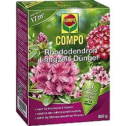 Rododendros largo tiempo de Abono Compo Rhodo de largo zeidüng. 850gr 21576