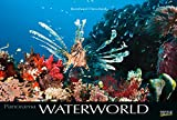 Waterworld 2019: Großer Foto-Wandkalender mit unterwasser-Bildern von Fischen. Edler schwarzer Hintergrund und Foliendeckblatt. PhotoArt Panorama Querformat: 58x39 cm.