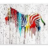 murando Papier peint intissé 200x140 cm Décoration Murale XXL Poster Tableaux Muraux Tapisserie Photo Trompe l'oeil-Bois zèbre coloré Afrique animale f-B-0035-a-a