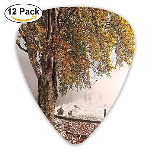 Birches Of A Big Tree In The First Fall Of Snow December Country Blizzard Frozen Nature Photo Guitar Picks 12/Pack