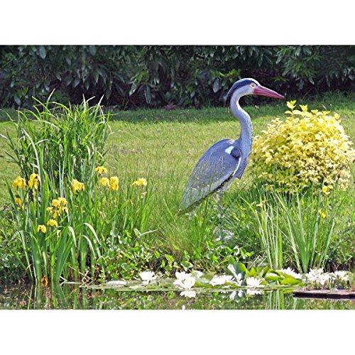 Unbekannt Gartenfigur/Teichdekoration Fischreiher - Reiherschreck