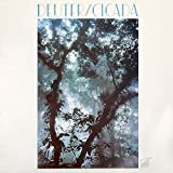 Deuter: Cicada [Vinyl]