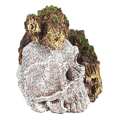 Pet Ting Sunken Skull and Broken Log Aquatic Ornament - Aquarium Decoration - Vivarium Decoration by Pet Ting