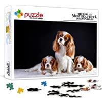 HQHSC 300 Piece Jigsaw Puzzle For Adults King Charles Spaniel Animal Jigsaw Interesting Toys Personalized Gift Family…