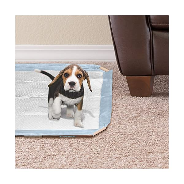 Simple Solution Dog and Puppy Pad Holder, Regular or Large Sized Training Pads 5