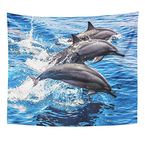 BAOQIN Tapisserie Unique Design Wonderful Prints Tapestries Print 50x60 Inches Blue Taiwan Wild Dolphins in The Pacific Ocean Hualian Side Pod Adventure Bay Wall Hangings Home Decor - Pacific Pod