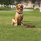 C&S Mittlere große Hundehalsband Hund Wander Seil Kette P Kette Zugseil Haustier Produkte (Color : Red and Black, Size : XL)