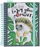 Grupo Erik Editores asve1802–Schülerkalender mit Spirale Enjoy Your Moment, 15.5x 19cm