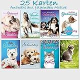 25 Glückwunschkarten Geburtstag Niedliche Tiere 11,5 x 17,5