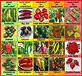 Chili Set D : 20 Sorten mild bis ultrascharf Weltrekord scharf Carolina Reaper Samen Chilli