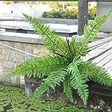 Lemon 10 Stücke künstliche Grün-Dekor Kunststoff Große Green Leaf Pflanzen AST Baum Pflanze