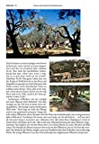 Elberfelder Bibel mit Erklärungen: und zahlreichen farbigen Fotos zur Welt der Bibel - 11