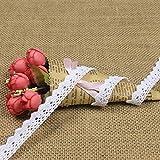 10 Meter Vintage Spitzenband Weiße Spitzenborte Häkel-Borte Spitze Nähen Spitzenbordüre Geschenkbox Deko (Weiße)
