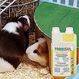 Bio-Reiniger und Geruchsneutralisierer Probisa Micro-Vet 813 für Hund - 5