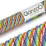 Paracord 550 Seil Rainbow | 31 Meter Nylon-Seil mit 7 Kern-Stränge | für Armband | Knüpfen von Hunde-Leine oder Hunde-Halsband zum selber machen | Seil mit 4mm Stärke | Mehrzweck-Seil | Survival-Seil | Parachute Cord belastbar bis 250kg (550lbs) Regenbogen, blau, rot, weiß, gelb, grün - Marke Ganzoo