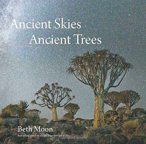 ancient-skies-ancient-trees