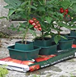 Growbag Pots (Set Of 6)