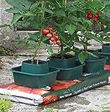 Selections - Vasetti per sacchi da coltivazione, set da 6