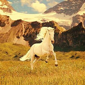 Nintendo DS Case Skin Sticker aus Vinyl-Folie Aufkleber Weißes Pferd Hengst Mustang Stute