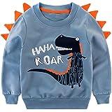 Little Hand Sudadera para niño con diseño de dinosaur