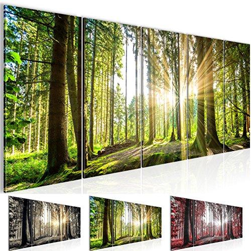 Bilder 200 x 80 cm - Wald Bild - Vlies Leinwand - Kunstdrucke -Wandbild - XXL Format - mehrere Farben und Größen im Shop - Fertig zum Aufhängen - !!! 100% MADE IN GERMANY !!! - 503855b