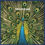 Songtexte von The Bluetones - Expecting to Fly
