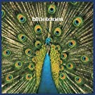 Expecting To Fly [VINYL]