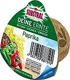 Substral Deine Ernte Saatkegel Gurke Kegel aus Keimsubstrat, Dünger und Samen, 1 Stück