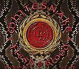Flesh & Blood (CD+Dvd Digipak) - Whitesnake
