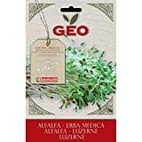 Geo ZER0203 Erba Medica Semi da Germoglio, Marrone