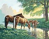 Mae-paintworks-Malen-nach-Zahlen-Pferde-von-The-Stream-Kit
