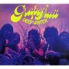Deep Water by GRAPEFRUIT (2007-10-31)