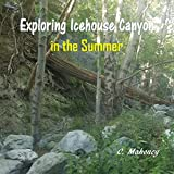 Exploring Icehouse Canyon in the Summer (English Edition)