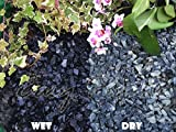 20KG Gravel Chippings Stone Slate Deter Weed Garden Patio Pathway Plant Topping - Black Basalt (10-20mm) - Easy Plants - amazon.co.uk