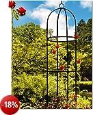 Lifetime Garden 19937Obelisco da Giardino Supporto Tutore in forma colonna Ferro Multicolore 9,0x 4,0x 52,0cm
