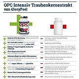 60 Kapseln GloryFeel OPC Intensiv 600 mit 600 mg OPC je Kapsel kaufen! - 3