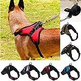 Cinghia del collo del cane del collare del cane dell'animale domestico regolabile Harnesses Cintura della trazione posteriore dell'animale domestico che cammina Guinzaglio della cinghia del guinzaglio