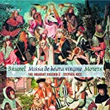 Brumel: Motets [Stephen Rice, The Brabant Ensemble ] [Hyperion: CDA68065]