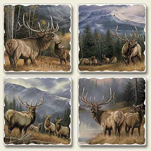 Highland Graphics- Mountain Meadows -Set of four Absorbent Stone Coasters by Mountain Meadows Absorbent Stone Coasters