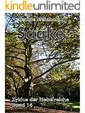 Saake (Zyklus der Nebelreiche 14)