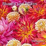 Blumen und Blüten - Kalender 2018 - DuMont-Verlag - Broschurkalender mit Poster und Platz zum Eintragen - 30 cm x 30 cm (offen 30 cm x 60 cm)