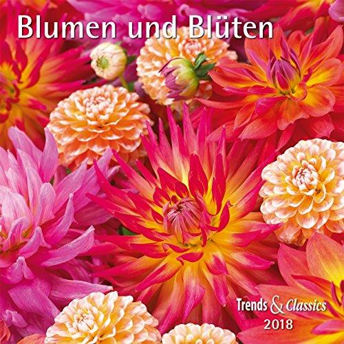 Blumen und Blüten - Kalender 2018 - DuMont-Verlag - Broschurkalender mit Poster und Platz zum Eintragen - 30 cm x 30 cm (offen 30 cm x 60 cm) (Hartriegel-blumen)