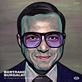 Les choses qu'on ne peut dire à personne / Bertrand Burgalat | Burgalat, Bertrand (1963-....)