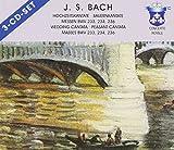 Johann Sebastian Bach: Hochzeitskantate / Bauernkantate / Messen BWV 233, 234, 236 -