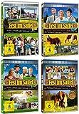 Staffel 1-4 (8 DVDs)