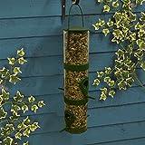 Elixir Gardens ® Wild Bird Feeder 2 Perch + FREE 1kg High Energy All Season Low Mess Premium Food x 1
