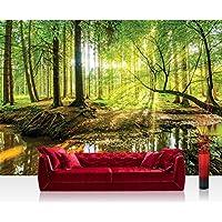 Vlies Fototapete 152.5x104cm PREMIUM PLUS Wand Foto Tapete Wand Bild  Vliestapete   Wald Tapete Laubwald