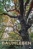 Baumleben 2018: Wandkalender - Peter Wohlleben